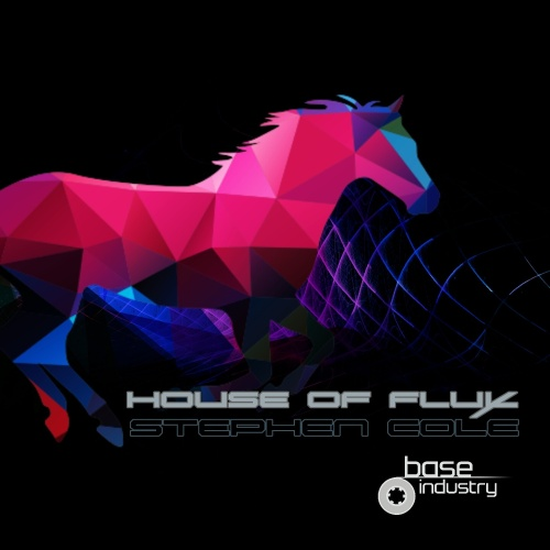 STEPHEN COLE - HOUSE OF FLUX